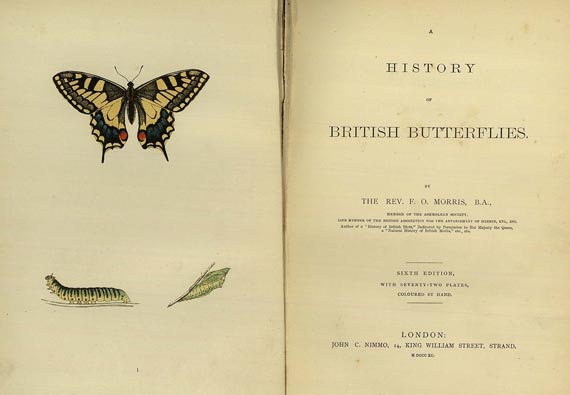 Francis Orpen Morris - History of british butterflies. 1890